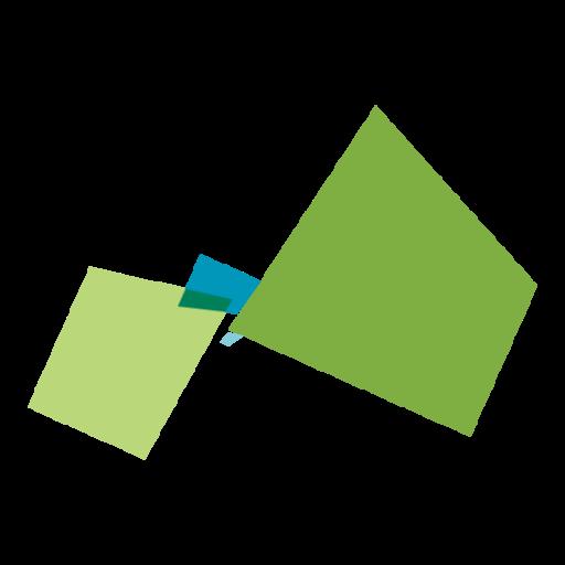 developer node vue js